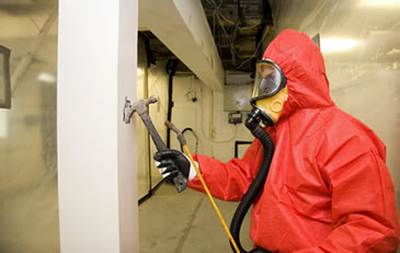 Asbestos removal services - Commercial - Domestic Asbsetos removal - 01226 384039