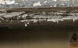 Asbestos removal services 01226 384039